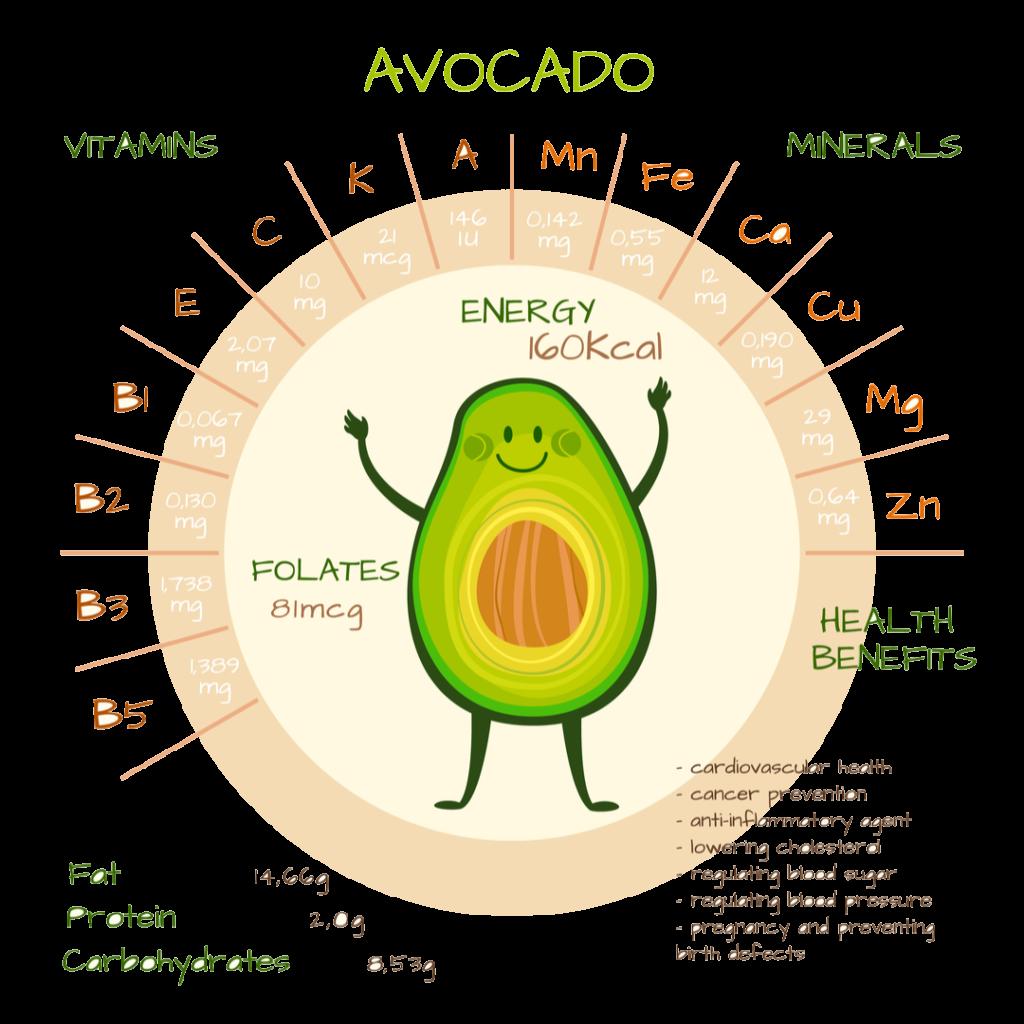 アボカドの栄養についてのイラスト
